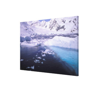 Antarctica. Expedition through icescapes Canvas Print