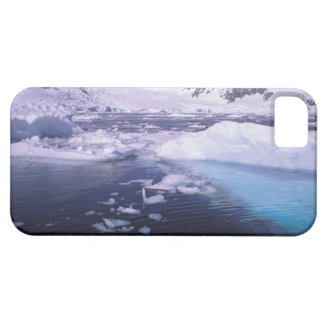 Antarctica. Expedition through icescapes iPhone SE/5/5s Case