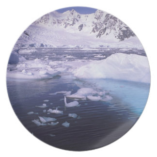 Antarctica. Expedition through icescapes Party Plate