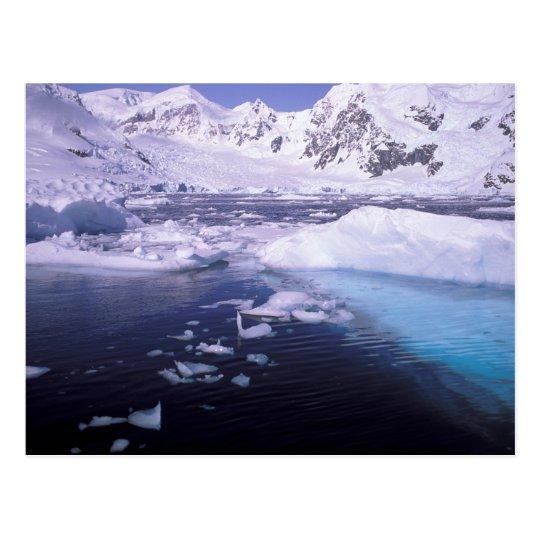 Antarctica. Expedition through icescapes Postcard