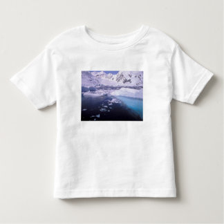 Antarctica. Expedition through icescapes Toddler T-shirt