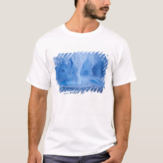 Antarctica. Iceberg with breaking waves T-Shirt