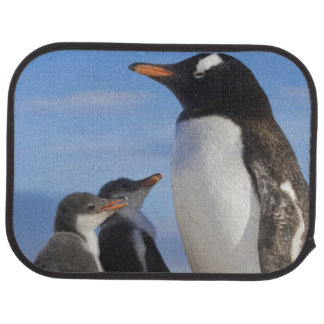 Antarctica, Neko Cove (Harbour). Gentoo penguin 2 Floor Mat