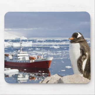 Antarctica, Neko Cove (Harbour). Gentoo penguin Mouse Pad