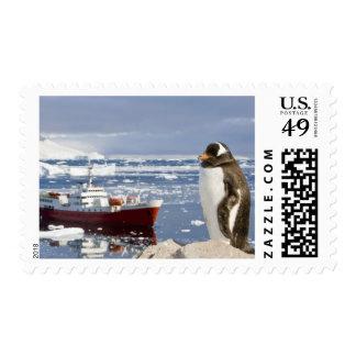 Antarctica, Neko Cove (Harbour). Gentoo penguin Postage