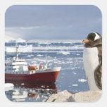 Antarctica, Neko Cove (Harbour). Gentoo penguin Stickers