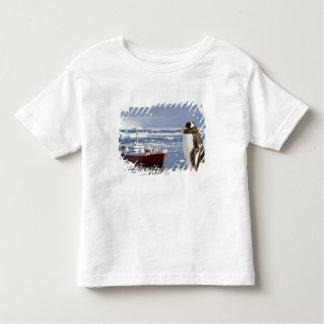 Antarctica, Neko Cove (Harbour). Gentoo penguin Toddler T-shirt
