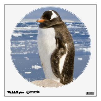Antarctica, Neko Cove (Harbour). Gentoo penguin Wall Decal