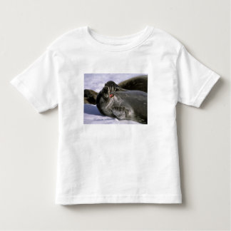 Antarctica, Nelson Island. Southern Furl seal Toddler T-shirt
