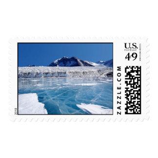 Antarctica Stamps