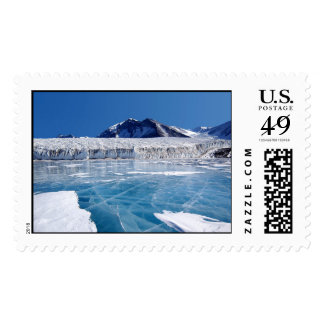 Antarctica Postage Stamp