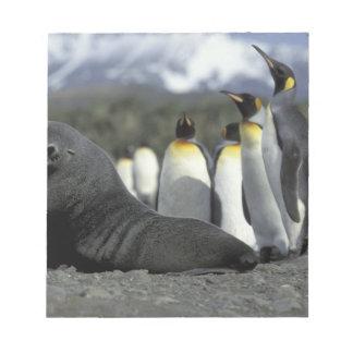 Antarctica, South Georgia Island. Antarctic fur Notepad