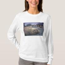 Antarctica, South Georgia Island, Elephant seal T-Shirt
