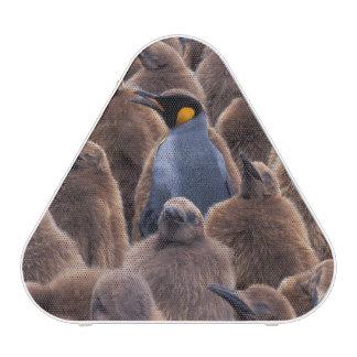 Antarctica, South Georgia Island, King penguins Bluetooth Speaker