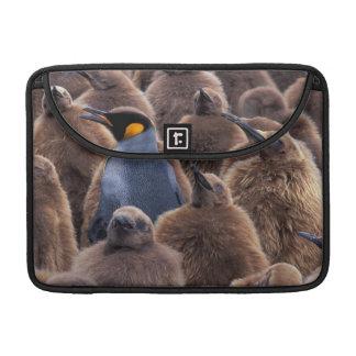Antarctica, South Georgia Island, King penguins Sleeves For MacBooks