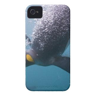 Antarctica, South Georgia Island (UK), 3 iPhone 4 Case-Mate Case