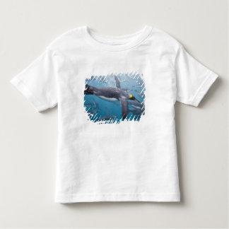 Antarctica, South Georgia Island UK), 3 Toddler T-shirt