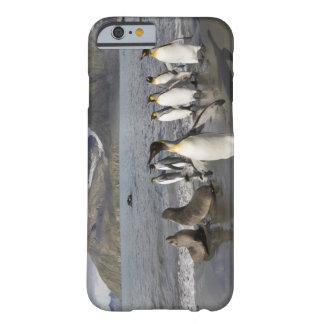 Antarctica, South Georgia Island (UK), Antarctic 2 Barely There iPhone 6 Case