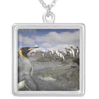 Antarctica, South Georgia Island (UK), Antarctic Silver Plated Necklace