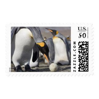 Antarctica, South Georgia Island (UK), King 10 Postage