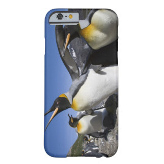 Antarctica, South Georgia Island (UK), King 12 Barely There iPhone 6 Case
