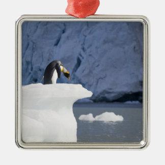 Antarctica, South Georgia Island (UK), King 13 Metal Ornament