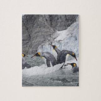 Antarctica South Georgia Island UK King 14 Puzzle
