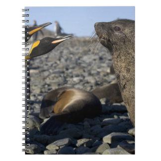 Antarctica, South Georgia Island (UK), King 15 Notebook