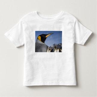 Antarctica, South Georgia Island UK), King 2 Toddler T-shirt