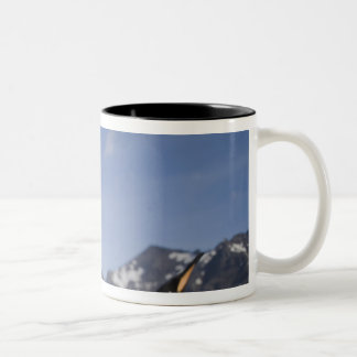 Antarctica, South Georgia Island UK), King 2 Two-Tone Coffee Mug