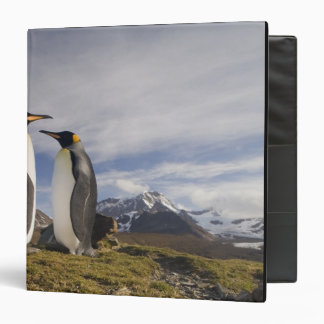 Antarctica, South Georgia Island UK), King 3 3 Ring Binder