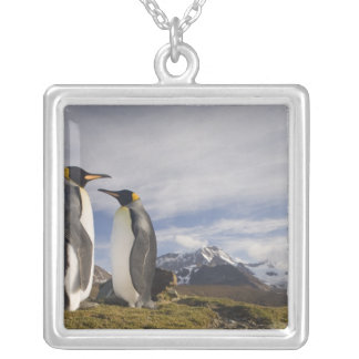 Antarctica, South Georgia Island UK), King 3 Silver Plated Necklace