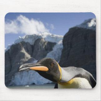Antarctica, South Georgia Island UK), King 4 Mouse Pad