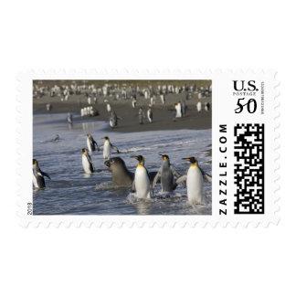 Antarctica, South Georgia Island (UK), King 4 Postage
