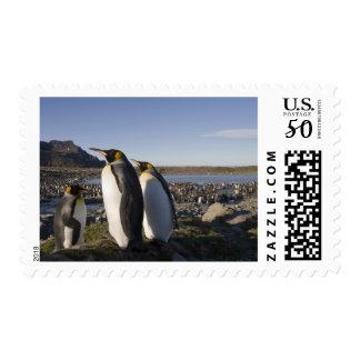Antarctica, South Georgia Island (UK), King 6 Postage