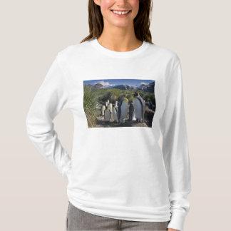 Antarctica, South Georgia Island UK), King 6 T-Shirt