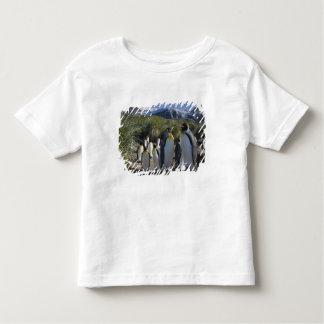 Antarctica, South Georgia Island UK), King 6 Toddler T-shirt