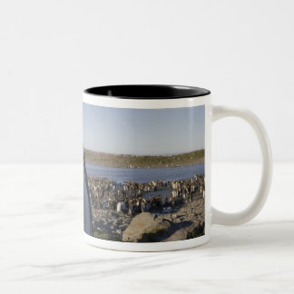 Antarctica, South Georgia Island (UK), King 6 Two-Tone Coffee Mug