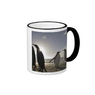 Antarctica South Georgia Island UK King 7 Mugs