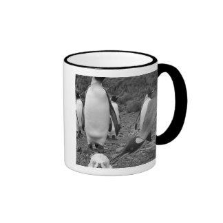 Antarctica, South Georgia Island (UK), King 9 Coffee Mug