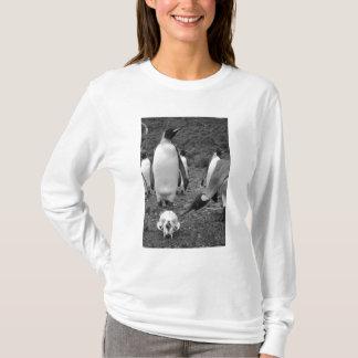 Antarctica, South Georgia Island (UK), King 9 T-Shirt