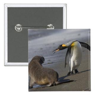 Antarctica, South Georgia Island (UK)King Pinback Button