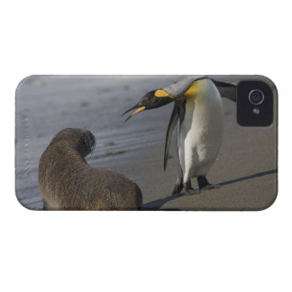 Antarctica, South Georgia Island (UK)King iPhone 4 Covers