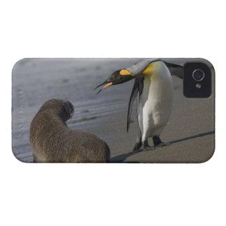 Antarctica, South Georgia Island (UK)King Case-Mate iPhone 4 Case