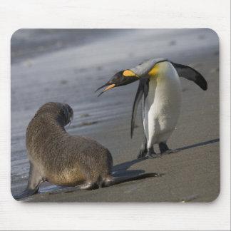 Antarctica, South Georgia Island (UK)King Mouse Pad