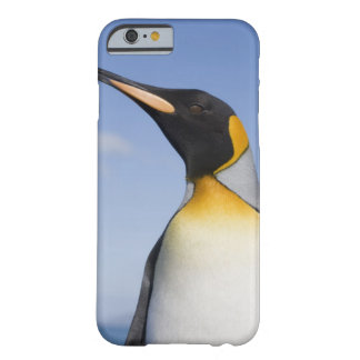 Antarctica, South Georgia Island (UK), Portrait Barely There iPhone 6 Case