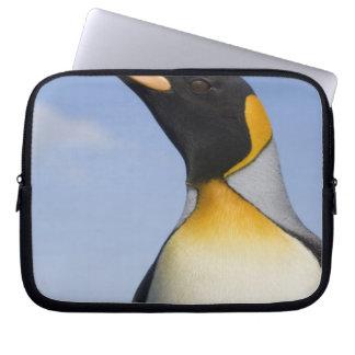 Antarctica, South Georgia Island (UK), Portrait Computer Sleeve