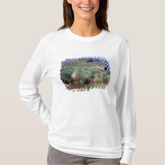 Antarctica, Sub-Antarctic Islands, South 3 T-Shirt
