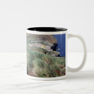 Antarctica, Sub-Antarctic Islands, South 3 Two-Tone Coffee Mug