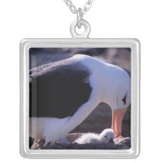 Antarctica, Sub-Antarctic Islands, South 4 Personalized Necklace